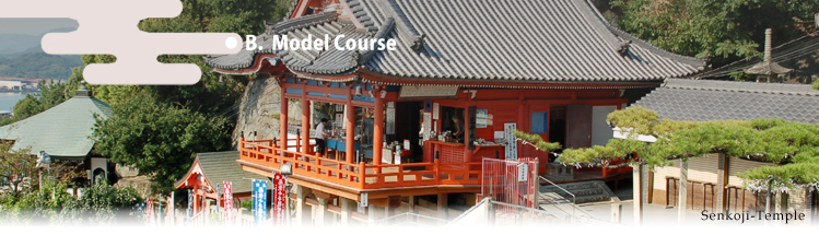Model Course