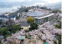 Town of Cherry blossoms,Onomichi